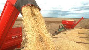 Exportações do agronegócio somaram US$ 96 bi em 2017
