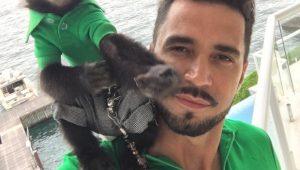 Twelves, macaco do cantor Latino, morre atropelado no Rio de Janeiro