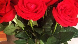 Aposte nas flores para a decoração de sua casa