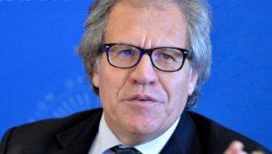 Secretário-geral da OEA sugere sanções contra governantes venezuelanos