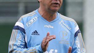 Agencia Palmeiras/ Divulgação