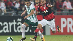 Cesar Greco / Agência Palmeiras / Divulgação