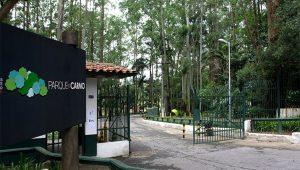 Divulgação/Governo de SP