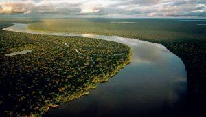 Reprodução/Instituto Amazônia