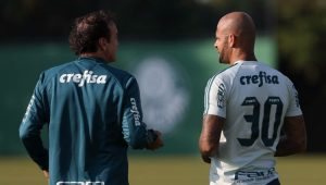 César Grego / Agência Palmeiras / Divulgação