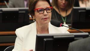 Na Indonésia, Tereza Cristina pede resposta a pedido de exportação de carne