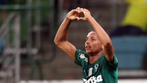 Futebol Campeonato Brasileiro Palmeiras Sport
