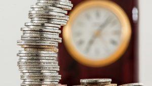 Denise Campos de Toledo: Reduzir pensões é questão bastante polêmica para o Governo