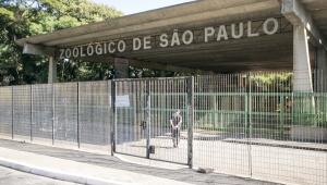 Concessão de zoológico é proposta por Doria em projeto enviado ao legislativo de São Paulo