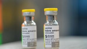 Casos de febre amarela sobem para 77 no estado do Rio de Janeiro