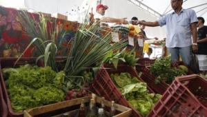 Saldo do agroindústria na balança comprova a posição do Brasil