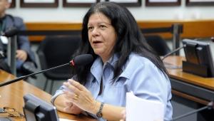 Laura Carneiro será relatora do decreto de intervenção