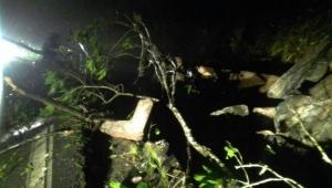 Queda de barreira causa interdição na rodovia Mogi-Bertioga, em SP