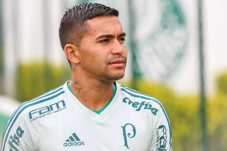 ... Dudu é capitão e ídolo do Palmeiras. Contrato foi ampliado em dois anos 43091d031ef14