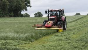 Reforma agrária: é possível fazer com eficácia?