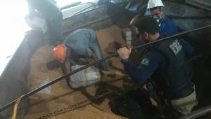 PRF apreende 1,5 tonelada de maconha no Paraná