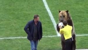 Comitê Organizador veta participação de urso na abertura da Copa