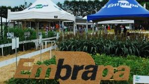 Embrapa apresenta novidades em tecnologia e inovação