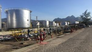 Decisão da Petrobras contraria política acertada que vinha sendo tomada, diz ex-diretor da ANP
