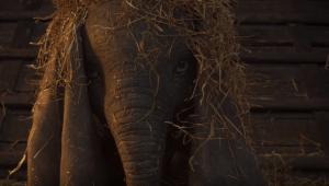 Versão live-action Dumbo ganha seu primeiro trailer