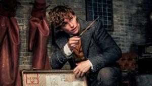 Animais Fantásticos 2 ganha trailer cheio de referências a Harry Potter