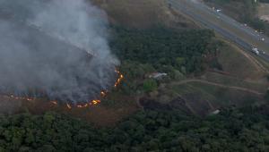 Incêndio atinge área do Pico do Jaraguá, em SP
