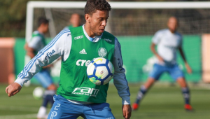 Willian e Marcos Rocha treinam e devem reforçar Palmeiras na quinta-feira
