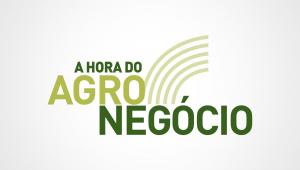 A Hora do Agronegócio - Como o Brasil será capaz de dobrar o tamanho do agronegócio?