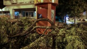 Tempestade Leslie atinge Portugal na madrugada deste domingo (14) e deixa ao menos 27 feridos