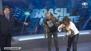 Cobra faz xixi e cocô no palco do 'Brasil Urgente', e Datena cai na gargalhada