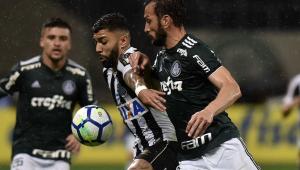 Após clássico emocionante, Palmeiras e Santos se reencontram cheios de mudanças