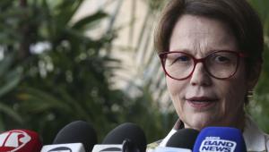 Plano Safra 2019/2020 será igual ou maior ao anterior, segundo ministra