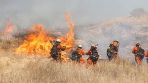 Gestão Trump culpa 'ambientalistas radicais' por incêndios na Califórnia