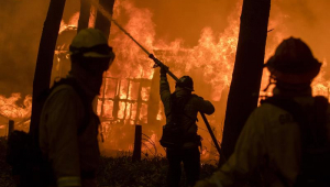 Incêndios na Califórnia: número de mortos sobe para 66; outras 631 pessoas estão desaparecidos