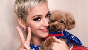 Katy Perry é a terceira apresentadora mais bem paga dos EUA