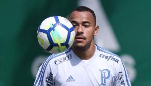 Sucesso de Papagaio cria dúvida no Palmeiras para 2019