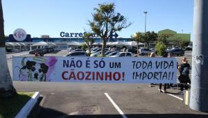 Ato contra morte de cão reúne dezenas em Carrefour de Campinas