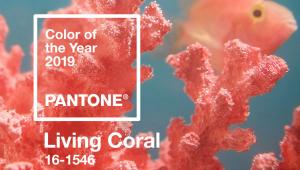 'Living Coral' é a cor da Pantone para 2019; veja como incorporá-la na moda e decoração