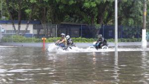 Chuva em São Paulo causa transbordamento de córrego, enchentes e quedas de árvores