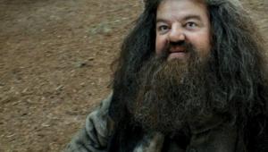 Ator de 'Harry Potter' aparece em cadeira de rodas por conta de artrose