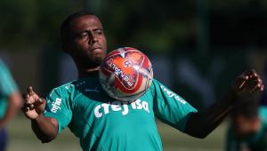 Recuperado de lesão no tornozelo, Carlos Eduardo volta a treinar no Palmeiras