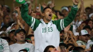 Mancha Alviverde repudia ataque a ônibus do Palmeiras, mas critica Felipão, Mattos e elenco