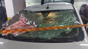 'Foi Deus que fez estarmos aqui', diz dona do carro que amorteceu queda de criança jogada pela janela