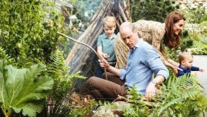 Príncipe William e Kate Middleton divulgam fotos de passeio de domingo em família