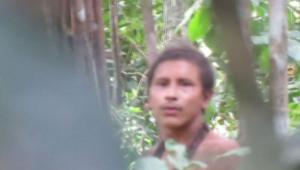 Vídeo registra cenas raras de indígenas Awá, da Amazônia