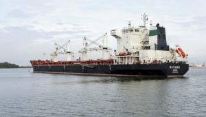 Sem combustível, navios iranianos continuam parados no Paraná; Petrobras tem medo de sanções dos EUA