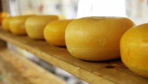 Bolsonaro beneficia produtores de queijo artesanal