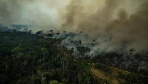 A pedido de Bolsonaro, PF vai investigar incêndios criminosos no Pará