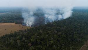 Argentina enviará 200 bombeiros ao Brasil para ajudar a combater incêndios na Amazônia