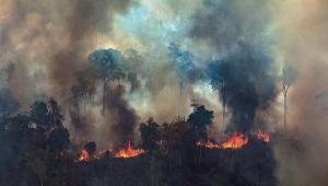 Queimadas no Brasil aumentaram 82%; 52% só na Amazônia